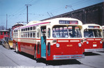 trolleybus-9101-01.jpg