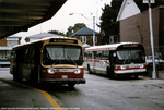ttc-8109-wellesley-1986.jpg