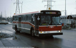 ttc-8445-steelesatfinch-198410.jpg