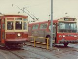 Witt 2766 and rebuild trolley bus 9321