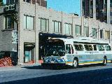 Leased Edmonton coach on Bay Street, photo by Brad O'Brien
