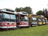 Trolley Buses at Halton